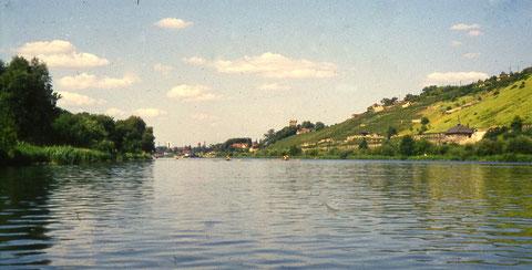 Auf dem Main ungefähr auf Höhe Ludwigsbrunnen im Juli 1958