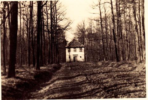 Dianenlust 1936
