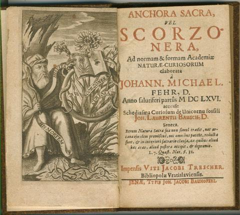 Titelseite des Buches Anchora Sacra vel Scorzo Nera des Gründers der leopoldinidchen Akademie der Naturwissenschaften Johann Michael Fehr aus dem Jahre 1666 - auf dem linken Blatt das Zeichen der Akademie