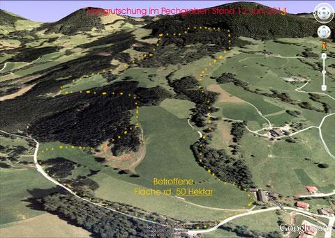 Auf einer Länge von ca. 2.000 Meter und bis zu 800 Meter breit bewegen sich rd. 50 Hektar Rutschfläche nach unten in den Pechgraben.