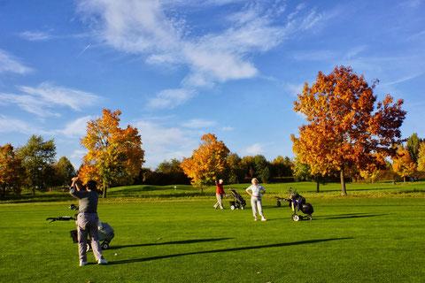 Herbstgolf im Golf-Club Domäne Niederreutin. Foto Rainer Sturm
