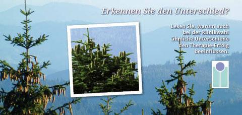Broschüre Fachklinik: Konzeption und Gestaltung, Fotos: Rainer Sturm stormpic.de