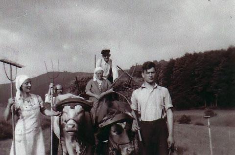 Heuernte in Steinbach 1936