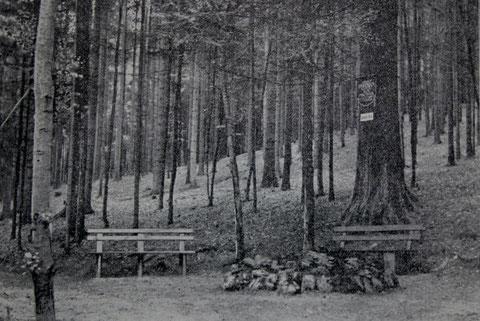 Junkers Grab- Foto aus der Badewoche Nr. 5 von 1914