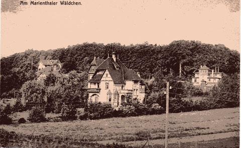 In der Mitte das Forsthaus, rechts der Lokschuppen, links daneben Villa Eden, Untere Reichshöhe und Gaststätte Reichshöhe, die Obere Reichshöhe