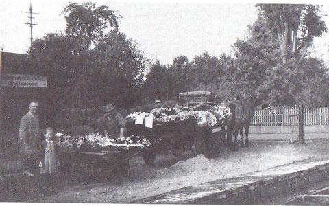 Otto Bachmann links, rechts davon Otto Leimbach, 50er Jahre - Vorbereitung des Transports der Kränze zum Friedhof - Aus Bad Liebenstein, wie es früher war