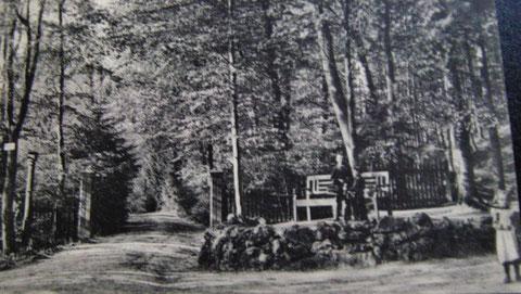 Wernerplatz Anfang 20.Jahrhundert - Sammlung W.Malek