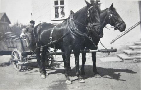 Pferdekutsche mit Mistwagen