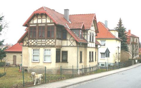 Heinrich-Mann-Straße 18, Golden Retriever +, Aufnahme März 2012