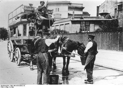 Pferdeomnibus, wie er so ähnlich auch von Immelborn nach Liebenstein hätte verkehrt haben können