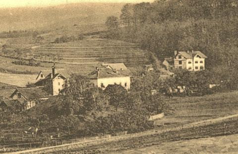 Inselsbergstraße Ausschnitt aus Klappkarte 1905 gelaufen, links Brauhaus Heym, Mitte Voigtei, rechts Feodorenhospital - Archiv W.Malek