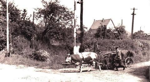 Richard Danz, Vater von Elfriede Mosebach am Bahnübergang Bahnhof Liebenstein - Archiv Elfriede Mosebach