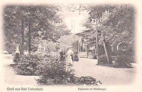 Archiv Martina Luther - Aufnahme Verlag L. Otto Weber, Hofphotograph Meiningen
