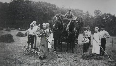 Heuernte mit Fritz Trautvetter (ganz rechts)