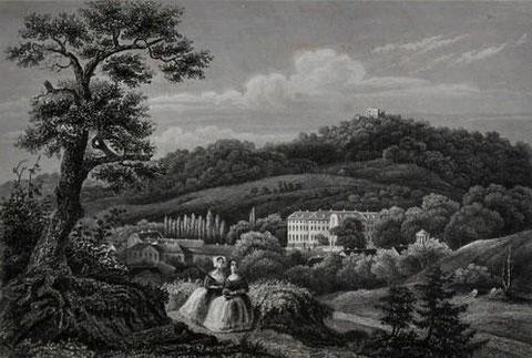 Gesamtansicht. Stahlstich im Bibliographischen Institut. Ansicht zum Burgberg oder Schloßberg um 1840