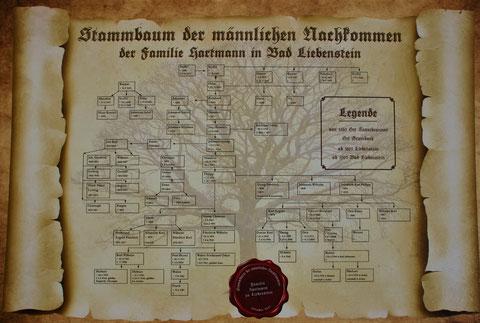 Stammbaum der männlichen Hartmänner