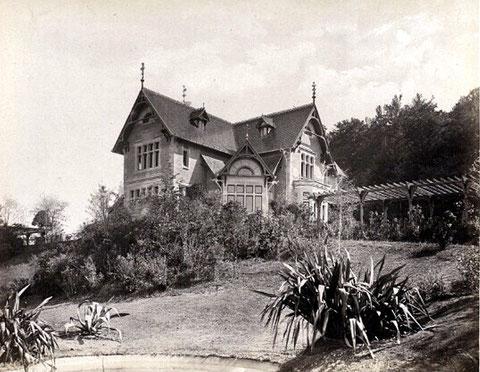 Hamburger Verlag Mencke & Co. - Aufnahme nach 1874 - Rechrche Volker Henning