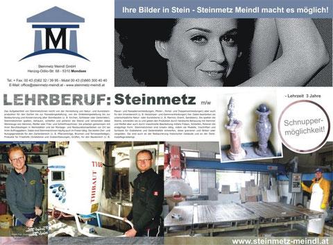 Steinmetz Meindl