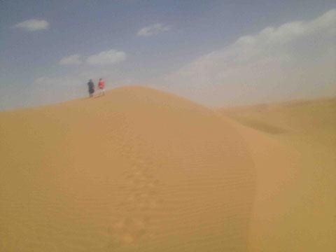 こんな風景が延々と続く。そしてこの砂漠も標高が1000mもあるときいてちょっと驚く。砂漠は平地、のような先入観があった。