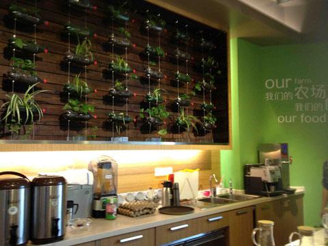 デモキッチンの壁にはペットボトルで植物が育てられていました