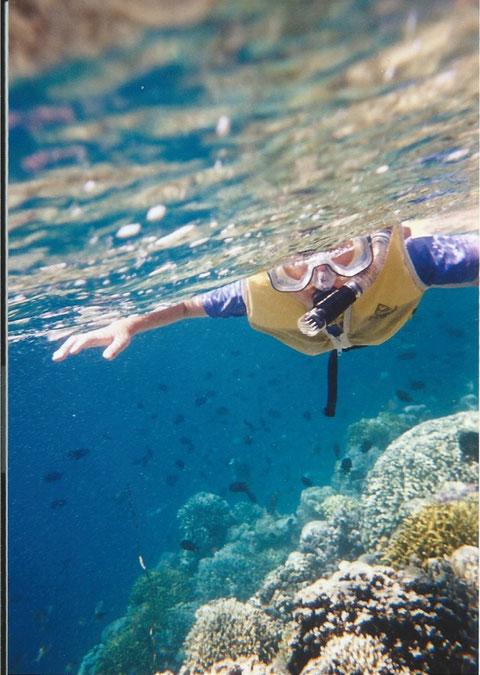 インドネシア、マナドの海は魚も多く美しい