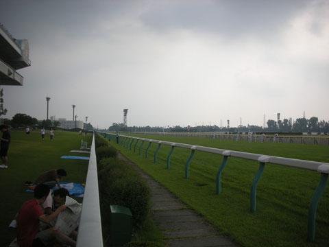 ウィナーズサークル前から4コーナーを臨む