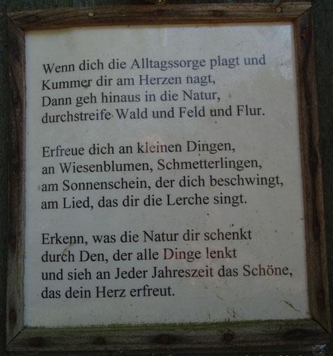 Gefunden am Kirschenwanderweg 1 oberhalb Wendershausen
