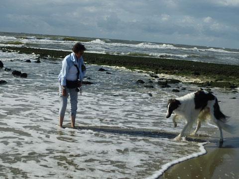 Ganz schön unheimlich - so eine Welle !!