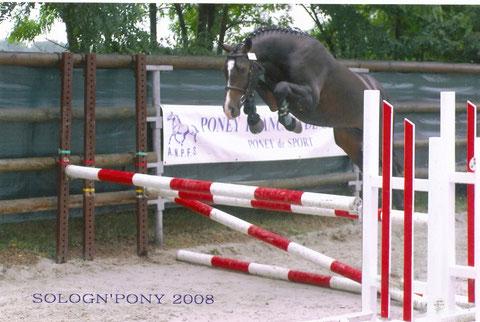 Roméo de Chambord, 2008, 3ans Championnat de France Sologn'pony