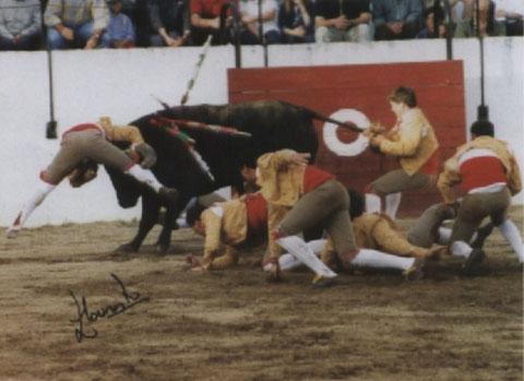 Ricardo Nunes na estreia da ganadaria Arronchense de Francisco Romão Tenorio, 27 de maio de 2000