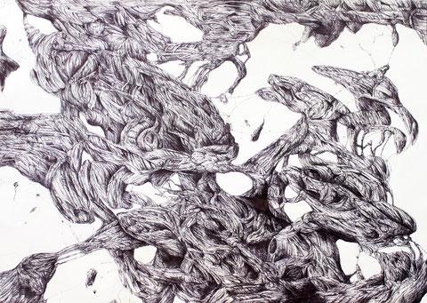 z/nefo1-1, Kugelschreiber auf Papier, 73 x 102 cm