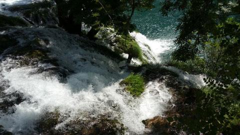 ... Alle anderen Touristen waren an den Krka oder Plivitzer Seen...