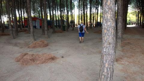 Zurück auf dem Campingplatz
