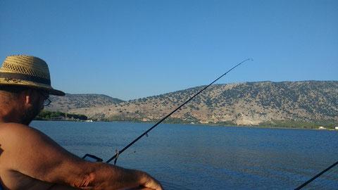 Mit etwas bösem Willen kann man einen E-Book Reader in der linken Hand erkennen... Von wegen konzentriert angeln...