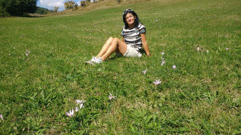 Unsere Picknick-Wiese, überall blühen Herbstzeitlose