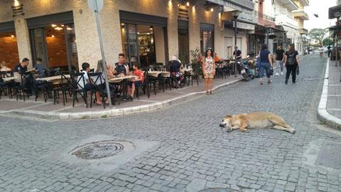 """Es gab gefühlte """"1000"""" Restaurants und Tavernen in Alexandroupoli, aber das war die Beste"""