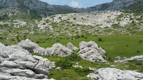 Auf dieser schönen Wiese wurden Intschu-tschuna und Ntscho-tschi begraben. Man sieht noch ihre Grabhügel.
