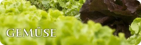 Gemüse von Gartenbau Knogler
