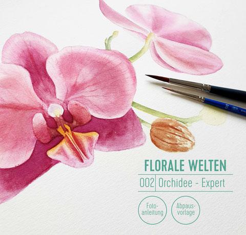 aquarell malen lernen, online malen lernen, aquarellblumen, orchidee, malen für fortgeschrittene, watercolor, botanische Aquarelle, Blumen malen, youdesignme