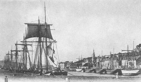 Le port de Binic en fin d'hiver, les goélettes sont en cours d'armement