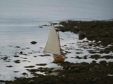 Du coté de l'île Bruc