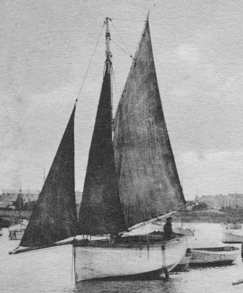 Jolie voilure du cotre M 1937,  dans le port de Roscoff, il est assez proche du Jouet des flots, remarquer le renfort en bois sur le tableau pour le « trou » de godille
