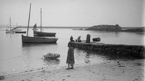 Une petite ilienne est venue avec son seau laver le cochon de la ferme sur la grève de Pors Kernoc'h  à proximité de la cale, sur l'îlot du Vil Vihan une meule de goémon sec (Photo Chauffy vers 1923)