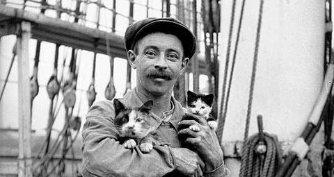 Un matelot et les chats du bord sur un voilier long-courrier vers 1900