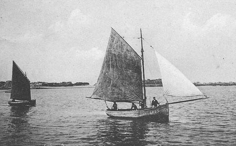 Port-Blanc, canot à misaine et sloup, les grands canots sont gréés en sloup ou en flambart. Ce sloup immatriculé T467 est le Sainte Marie (2,36 tx) construit en 1908 pour le patron Guillaume Le Rallec