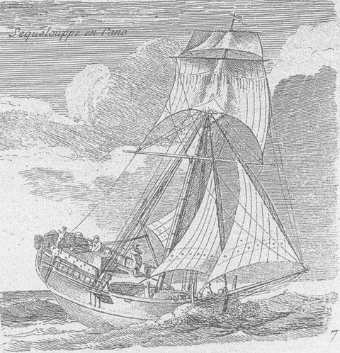 « Sequelouppe en pane » on peut rapprocher  cette appellation de sloup et également de chaloupe, d'autres sources en anglais précisent que le vaisseau marchant capturé est un sloop