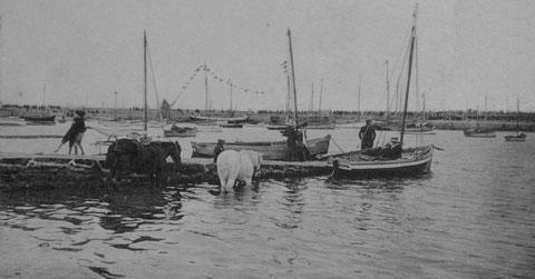 On aperçoit Le vieux quai de Roscoff,  noir de monde depuis la petite cale près du chantier au fond du port