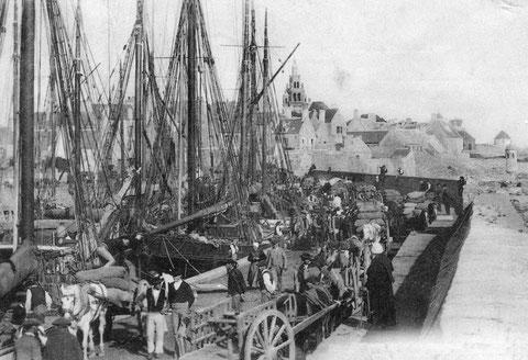 De la terre à la mer, embarquement des oignons et des compagnies de johnnies à bord des goélettes, sloups et dundées de cabotage