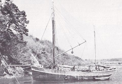 Le Yves Thérèse, 15,88 m de long 40,16 Tx équipé d'un moteur de 48 Cv lancé en 1932 à Camaret pour François le Bot de Logonna il termina sa carrière à l'île de Batz en 1952 (Photo Ar Vag tome 3)
