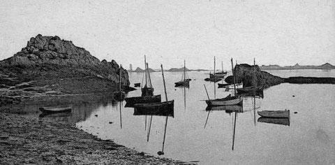 Sur cette  belle photo du port de Loguivy , l'on voit des sloups, un canot à misaine à tapecul , deux canots à misaine et des canots plus petit sans mât servant d'annexe aux grands sloups